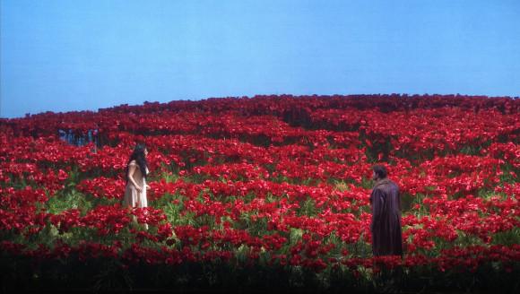 3.poppies