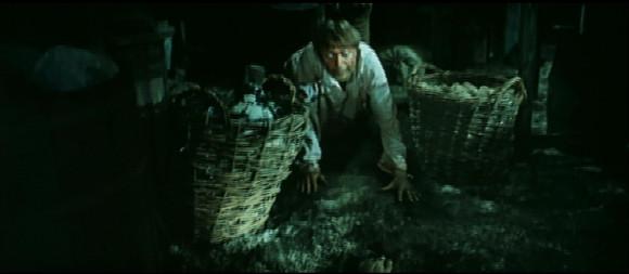 4.cellar