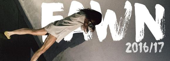 fawn1617